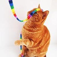 猫用おもちゃ レインボーキャットチャーマー