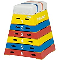 TOEI LIGHT(トーエイライト) カラー跳び箱6段 下幅65(上幅30)×奥行60×高さ80cm 6段 上部ライン入帆布 小学校向 T2573 T2573
