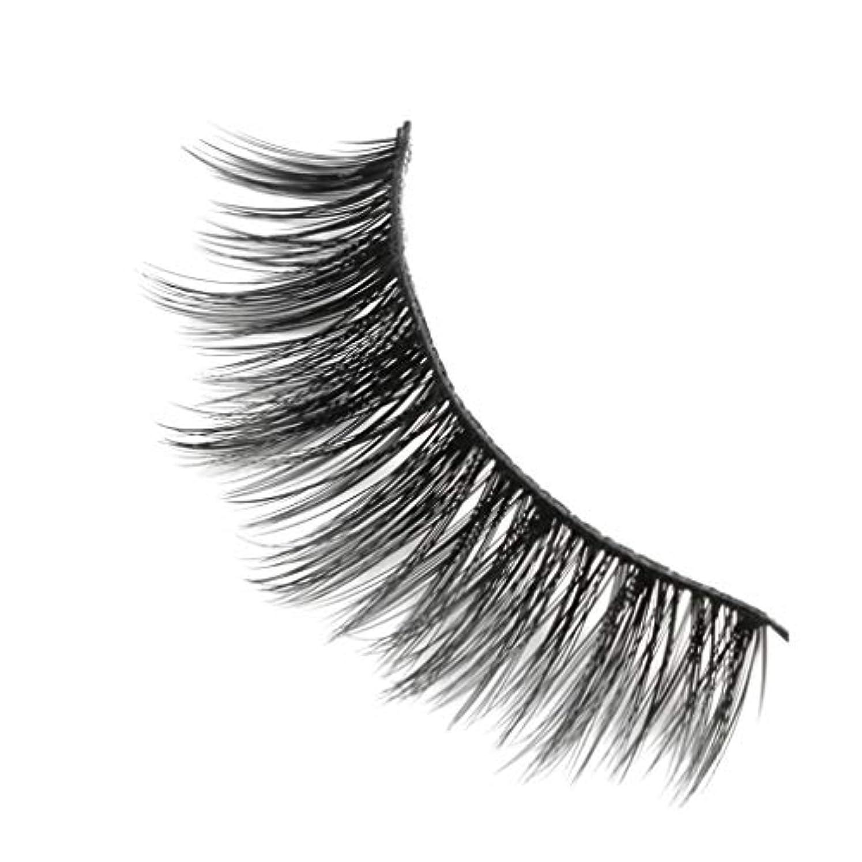 控える楽しい使い込む柔らかい長い巻き毛と歪んだ多くの層まつげと3Dミンクの毛皮の10ペア