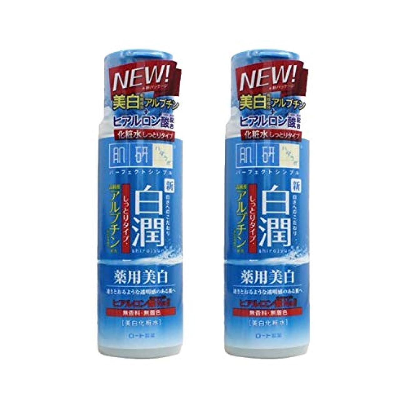 【2本セット】 肌ラボ 白潤 薬用美白化粧水 しっとりタイプ 170mL (医薬部外品)× 2本