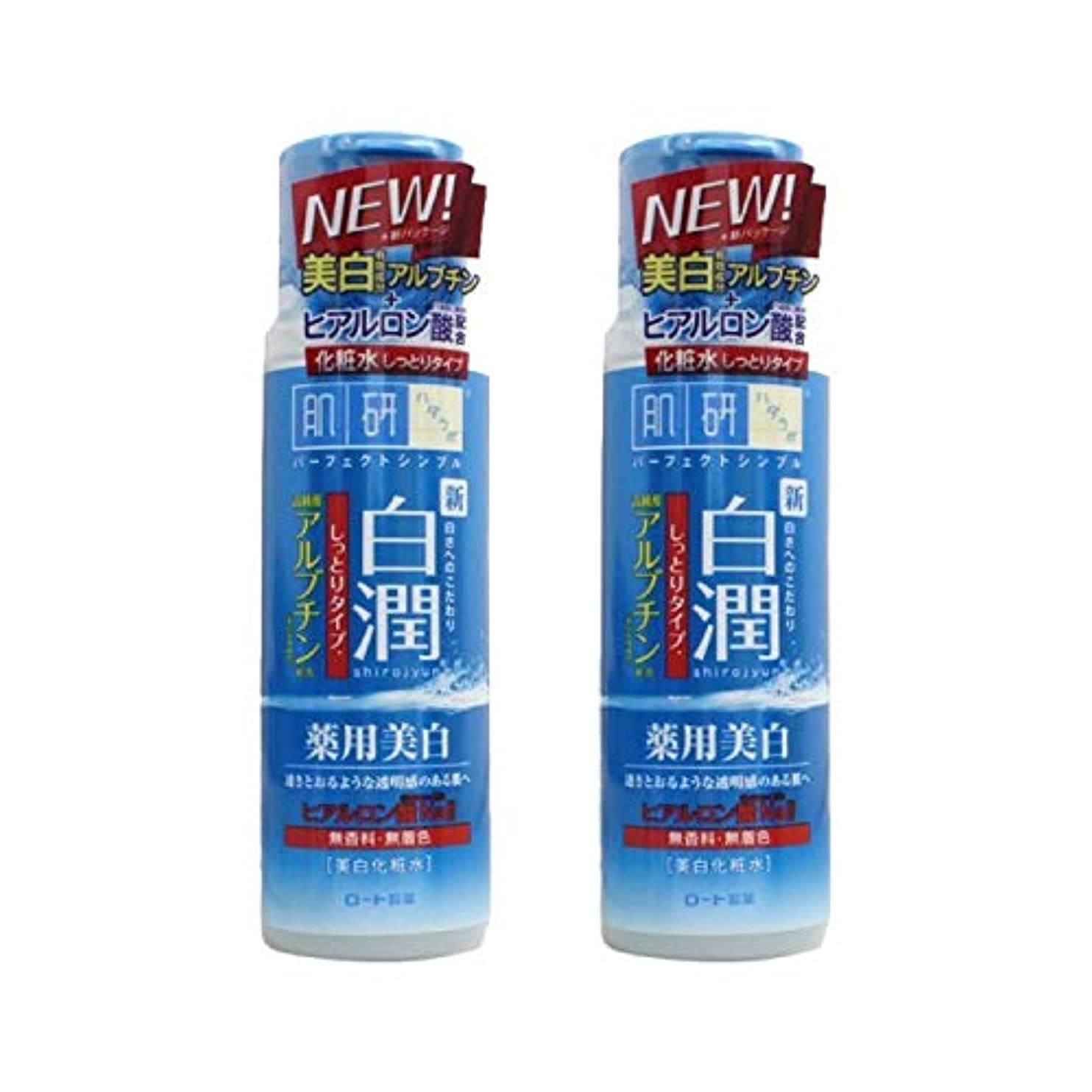 無駄だ流行知る【2本セット】 肌ラボ 白潤 薬用美白化粧水 しっとりタイプ 170mL (医薬部外品)× 2本