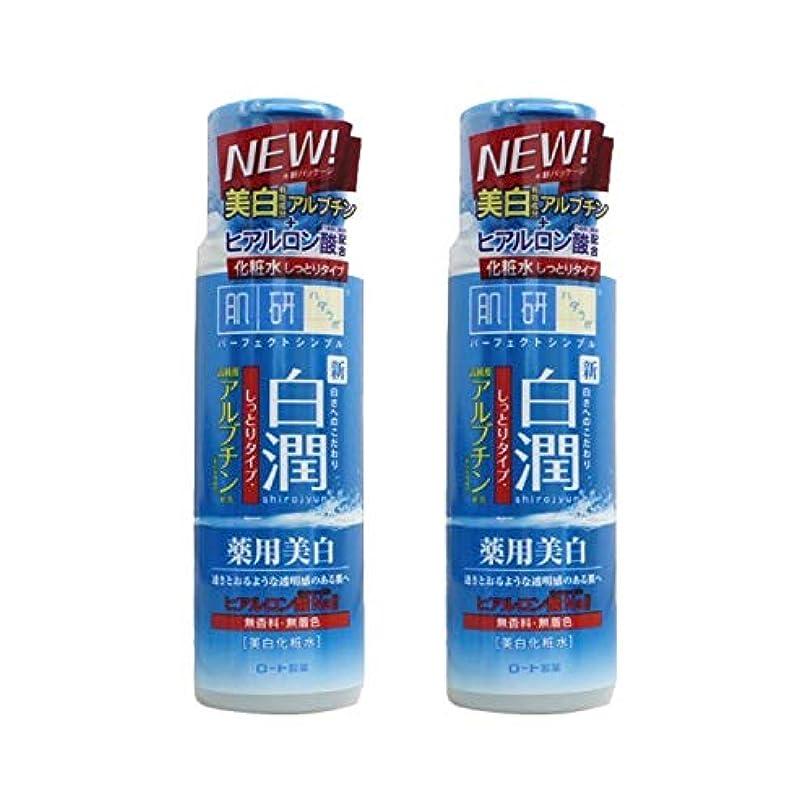 台無しに名門ドロップ【2本セット】 肌ラボ 白潤 薬用美白化粧水 しっとりタイプ 170mL (医薬部外品)× 2本