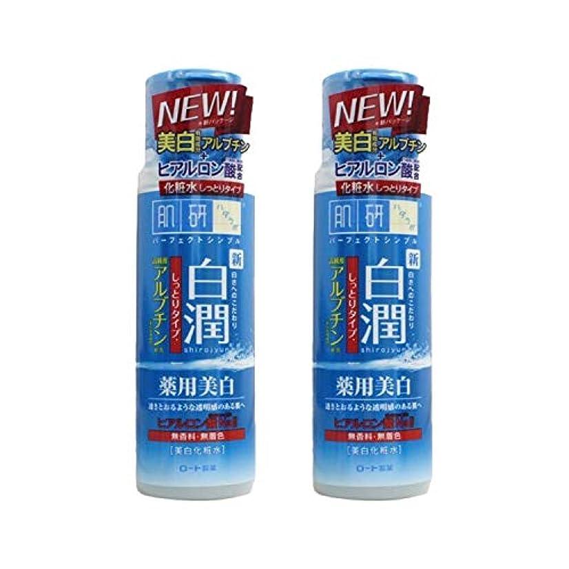ぬるい崇拝します高く【2本セット】 肌ラボ 白潤 薬用美白化粧水 しっとりタイプ 170mL (医薬部外品)× 2本