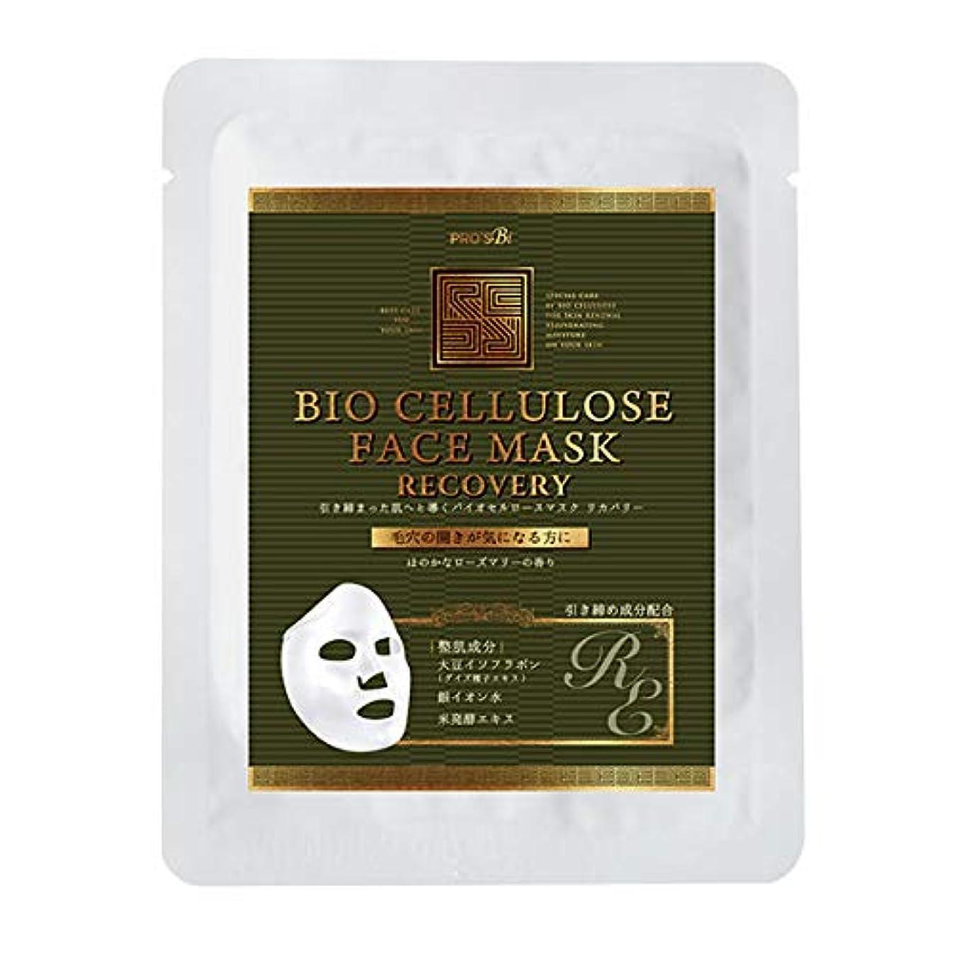 ユニークな個人的にアクチュエータプロズビ バイオセルロースマスク リカバリー (10個セット) [ フェイスマスク フェイスシート フェイスパック フェイシャルマスク シートマスク フェイシャルシート フェイシャルパック ローションマスク ローションパック 顔パック ]