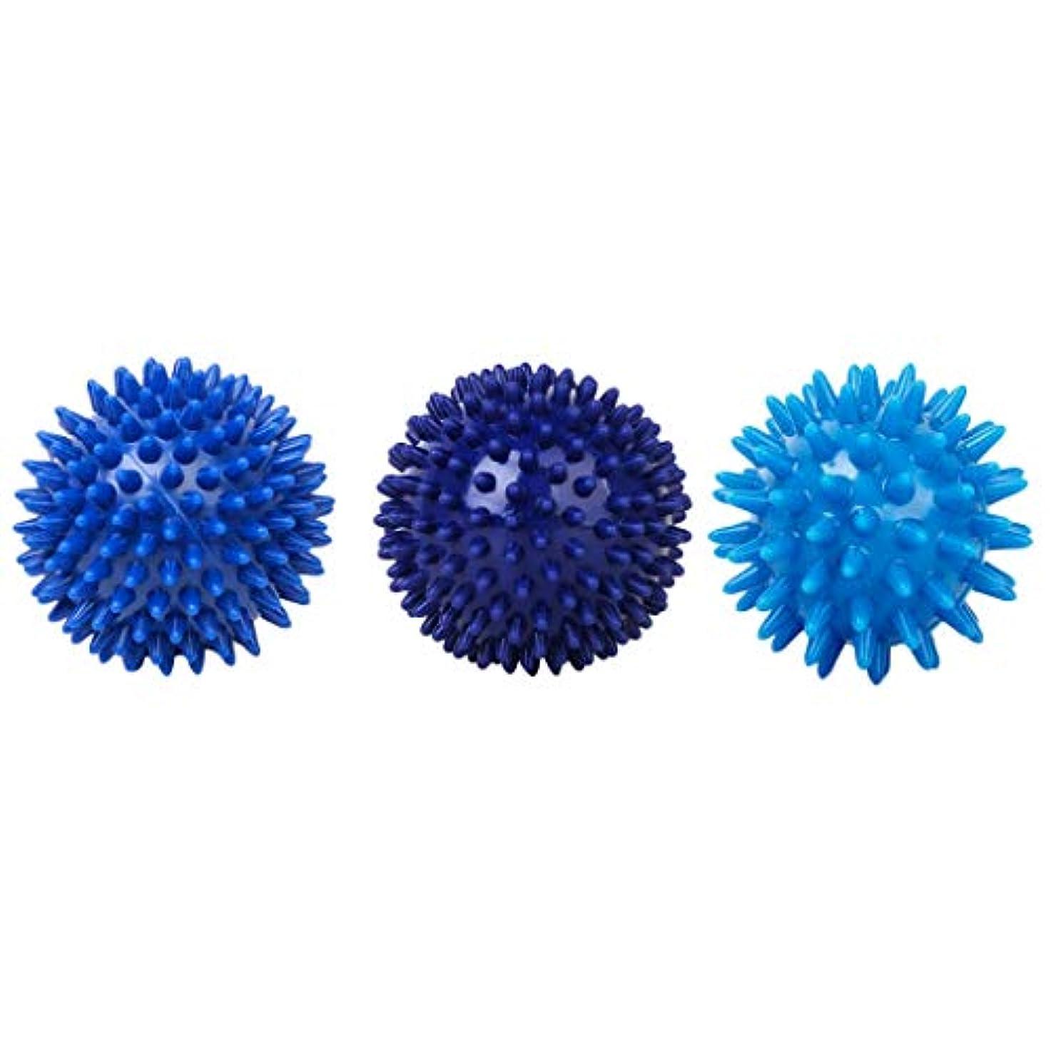 終了する原告虚偽マッサージボール 筋膜ボール ハードボール プラスチック 全身マッサージ 血液循環促進