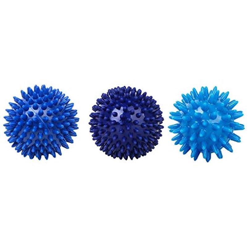 代表する結婚した打撃マッサージボール 筋膜ボール ハードボール プラスチック 全身マッサージ 血液循環促進
