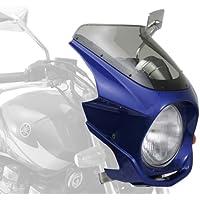 DAYTONA(デイトナ) 【AR Breaker(ARブレーカー) ビキニカウル】 XJR1300('99-'05)/ディープパープリッシュブルーメタリックC 74579