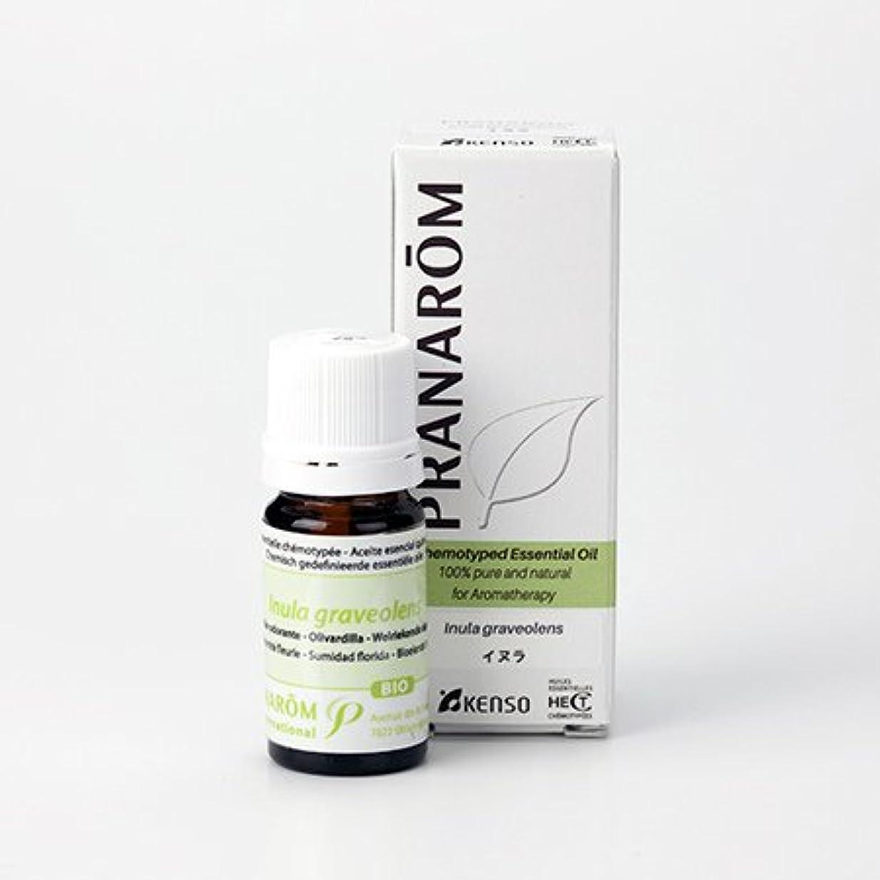 シーサイドにんじん織機プラナロム イヌラ 5ml (PRANAROM ケモタイプ精油)