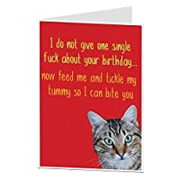 恋人の所有者のための猫からのおかしい誕生日カードCrazy Lady