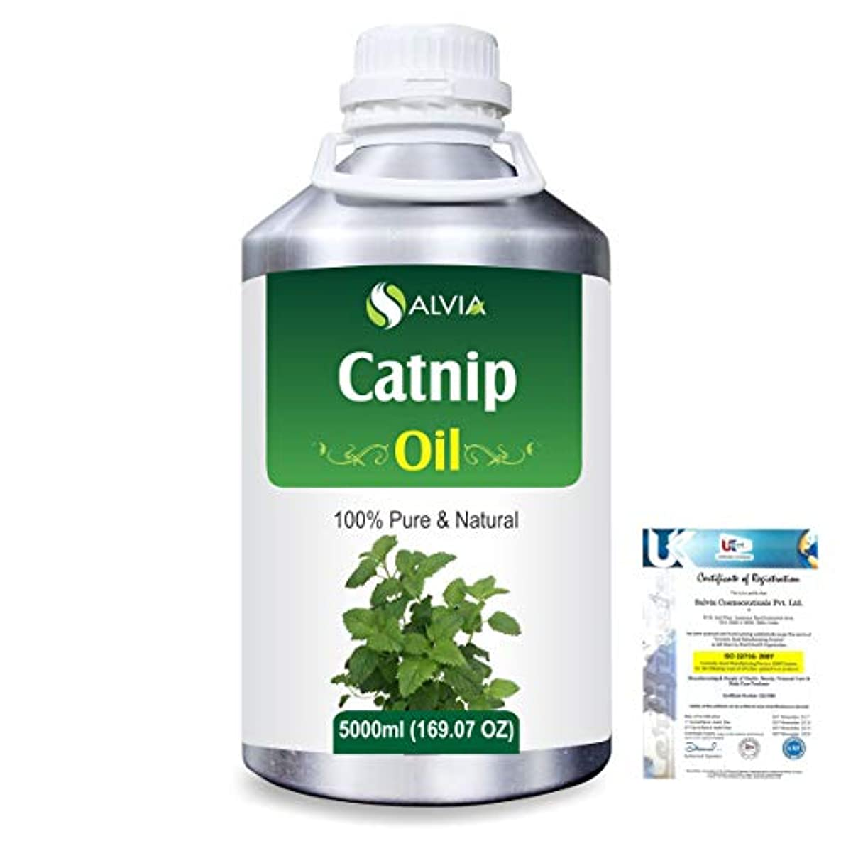 子供っぽいタイピスト彼はCatnip (Nepeta cataria) 100% Natural Pure Essential Oil 5000ml/169fl.oz.