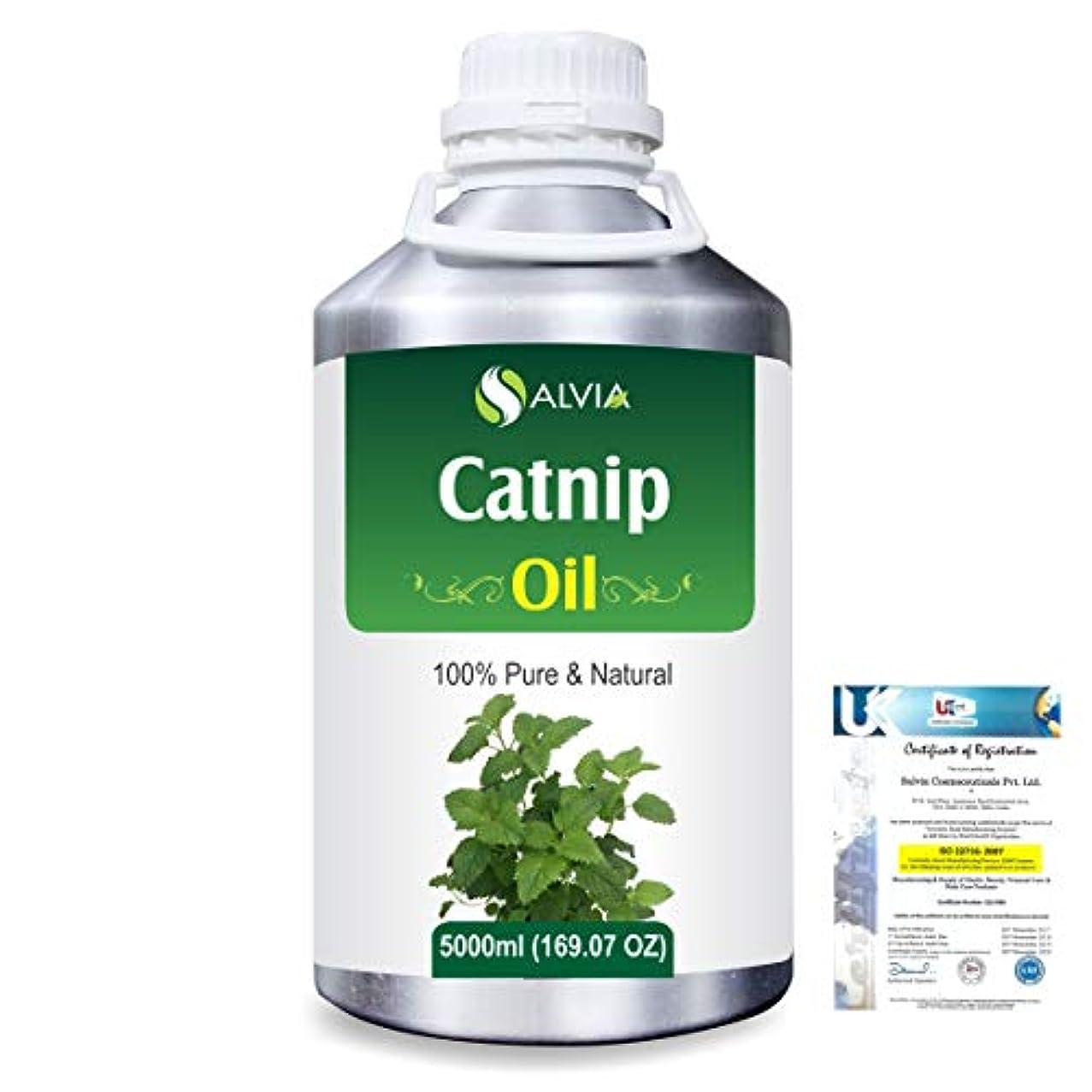 葉を拾う合わせて移行するCatnip (Nepeta cataria) 100% Natural Pure Essential Oil 5000ml/169fl.oz.