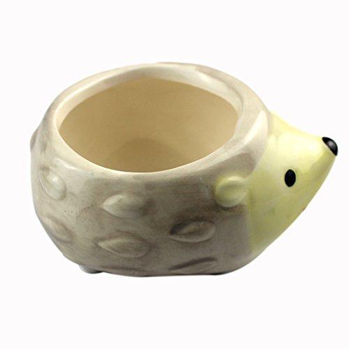 『陶器鉢ハリネズミ植木鉢多肉植物』