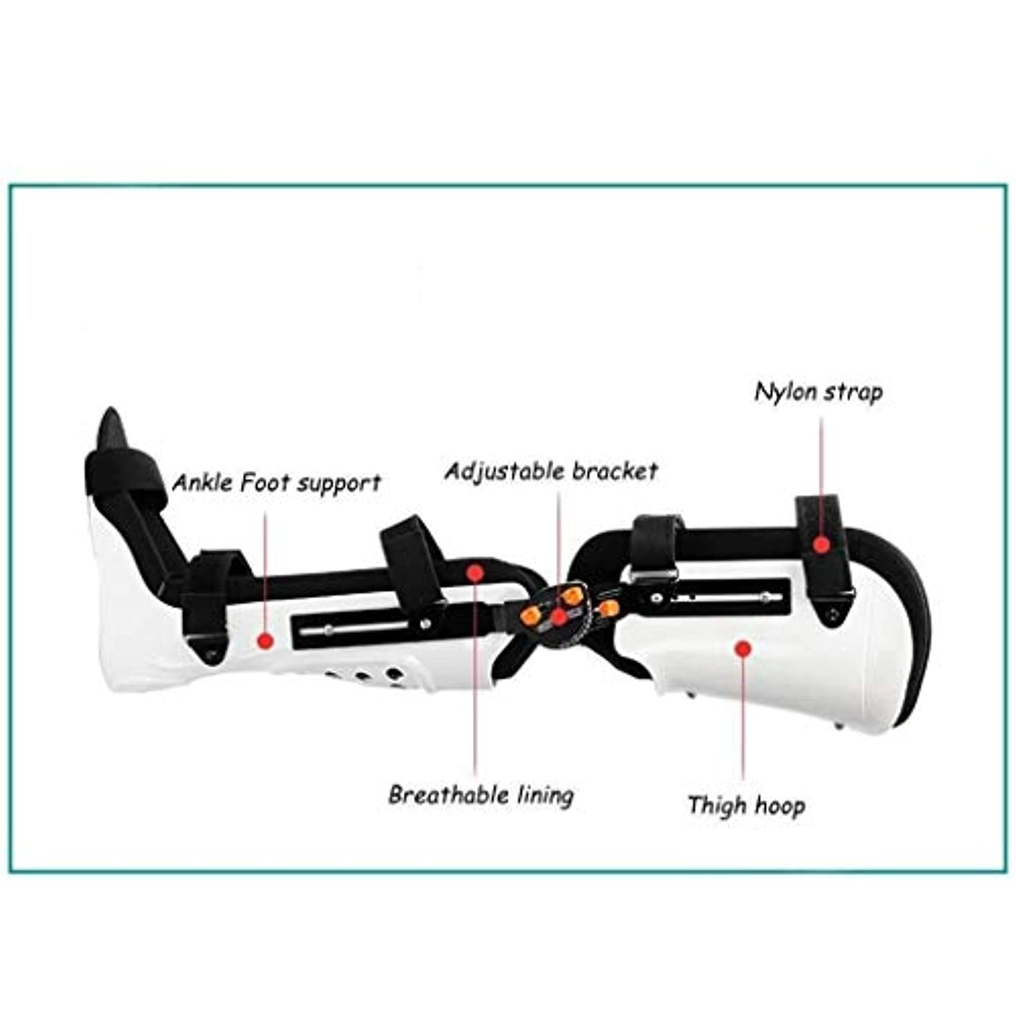 グレード配置解体する膝脚ブレース調整可能なヒンジ付き脚テープ膝サポート骨折足首ブレース靭帯損傷、術後ヒンジ (Color : As Picture, Size : Right-M)
