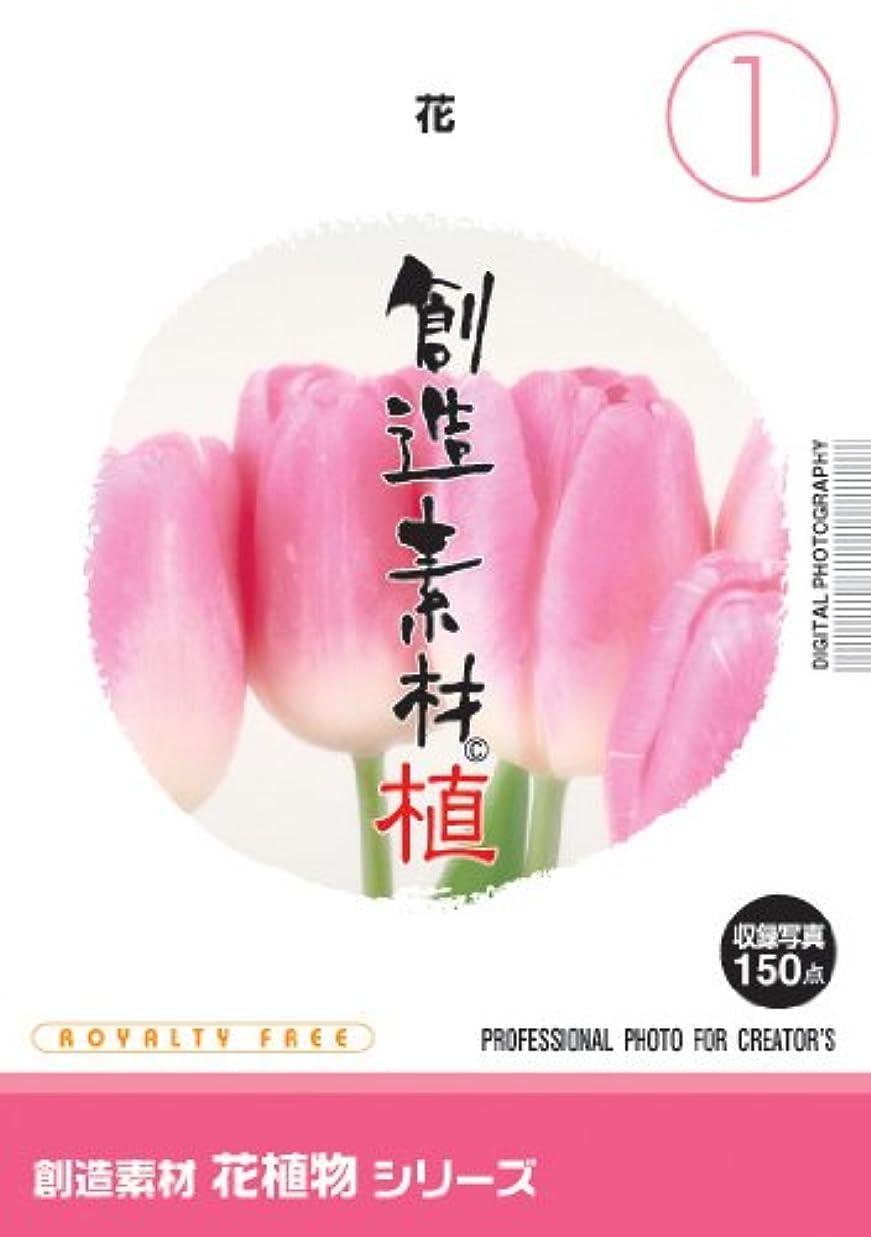 優しさ乙女質素なイメージランド 創造素材 花植物(1)花