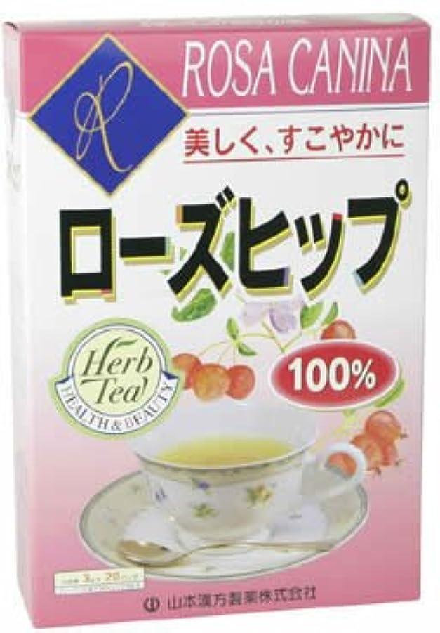 祝福アベニュー明るい山本漢方製薬 ローズヒップ100% 3gX20H