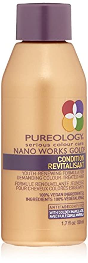 パイほうき近々Nano Works Gold Conditioner