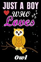 Just a Boy who loves Owl: Owl  Lover notebook or dairy, Perfect Owl  lovers Notebook gift for Boy