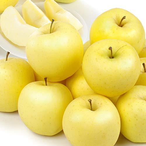 国華園 青森産 ご家庭用 金星 10kg1箱 りんご