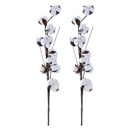 WINOMO ドライフラワー 棉花 コットンフラワー 20輪 撮影道具 インテリア 飾り物 おしゃれ 56cm 2本セット