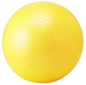 トータルフィットネス(TotalFitness) フィットネスボール STT068 55cm