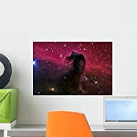 Horsehead Nebula Wall Mural by Wallmonkeys Peel and Stick Graphic (18 in W x 12 in H) WM152584 [並行輸入品]