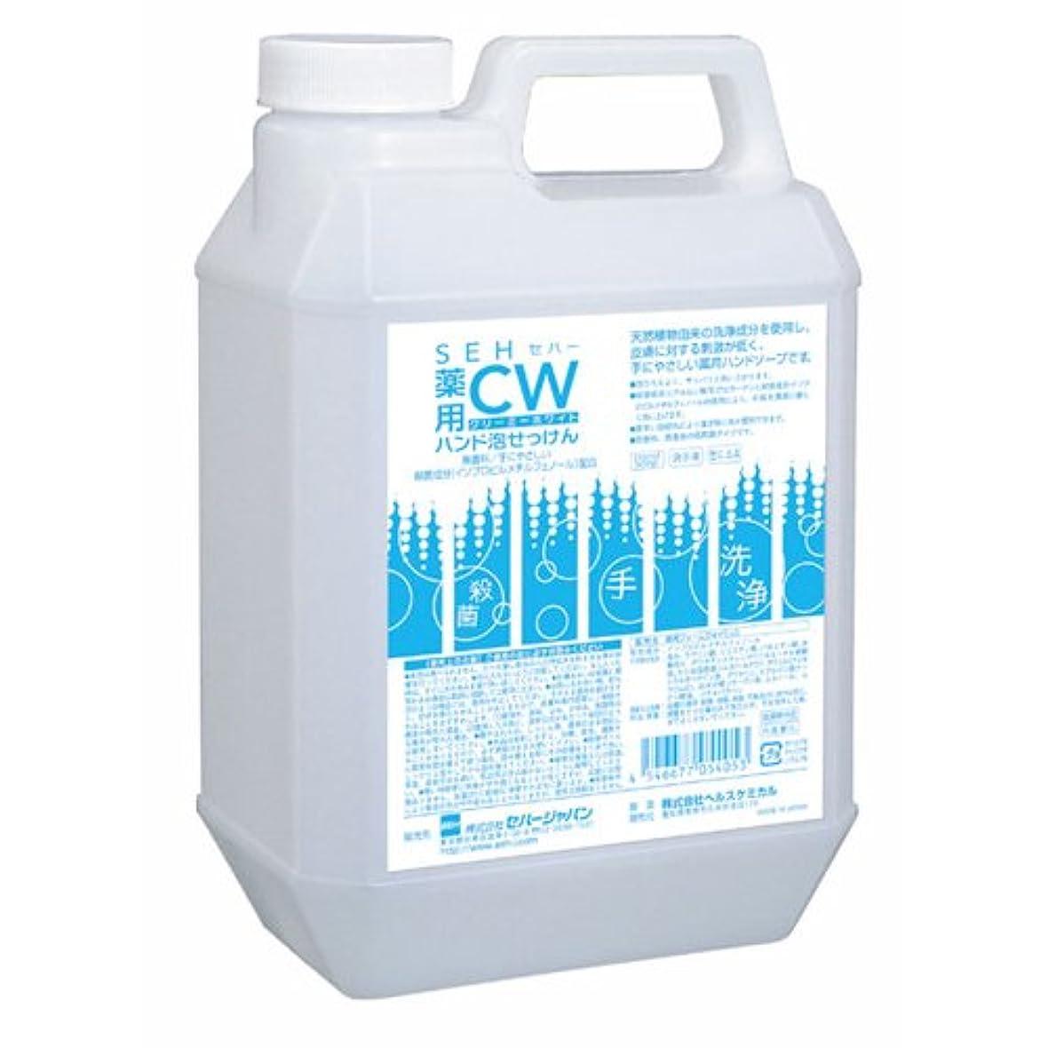 同種のたとえボイドセハー 薬用CWハンド泡せっけん 2L