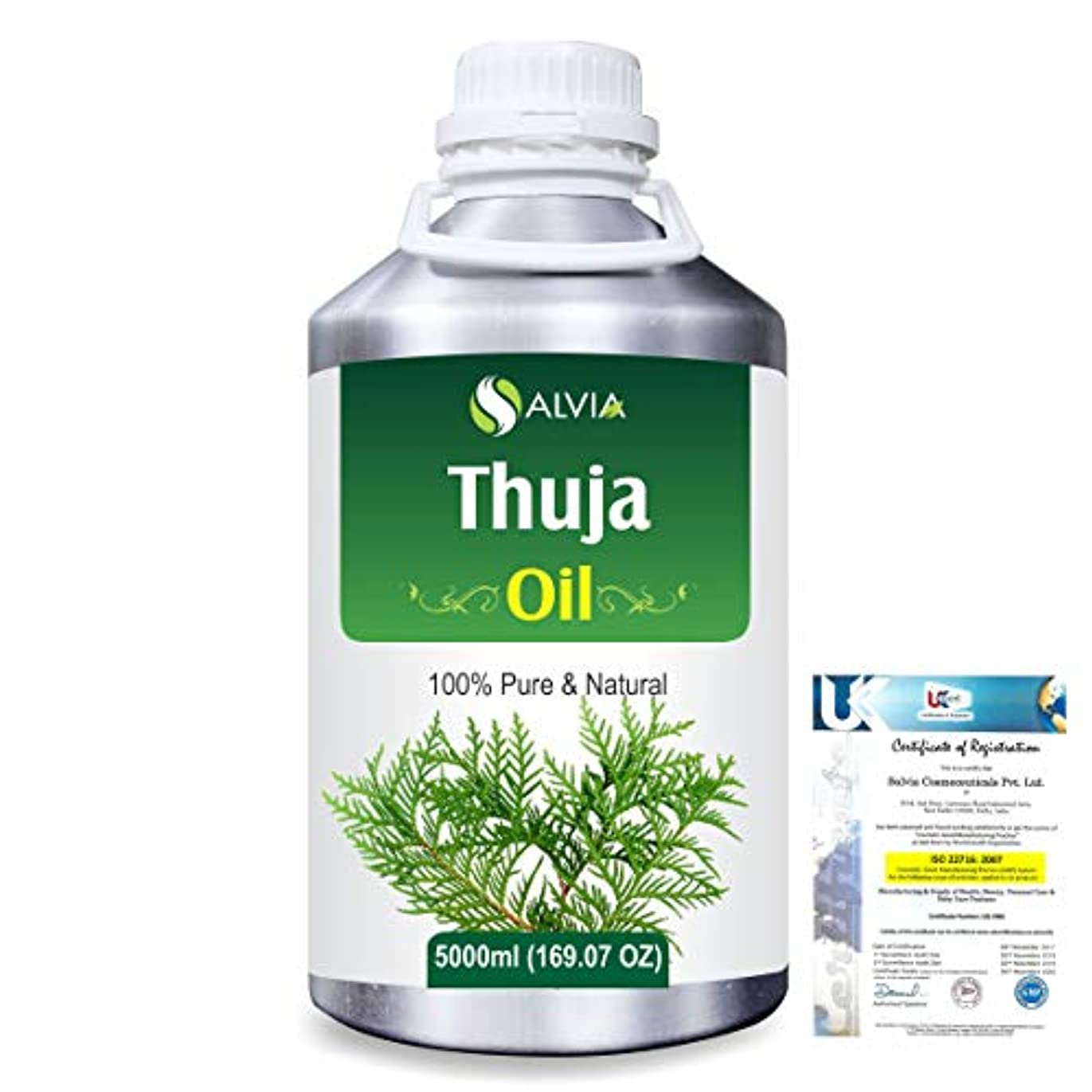 読者動物園壮大Thuja (Thuja Orientali) 100% Pure Natural Essential Oil 5000ml/169 fl.oz.