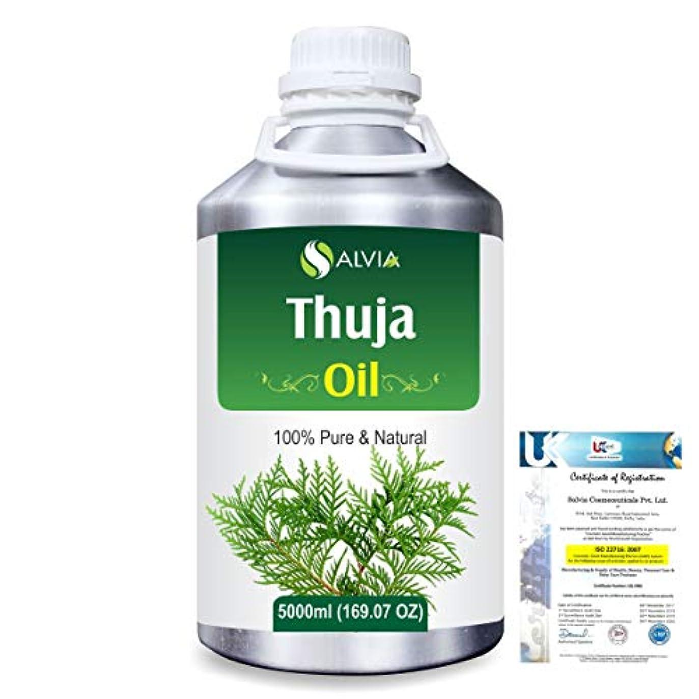 考案する治療仮説Thuja (Thuja Orientali) 100% Pure Natural Essential Oil 5000ml/169 fl.oz.