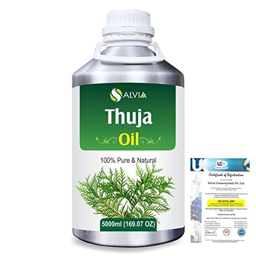 合図作ります翻訳者Thuja (Thuja Orientali) 100% Pure Natural Essential Oil 5000ml/169 fl.oz.
