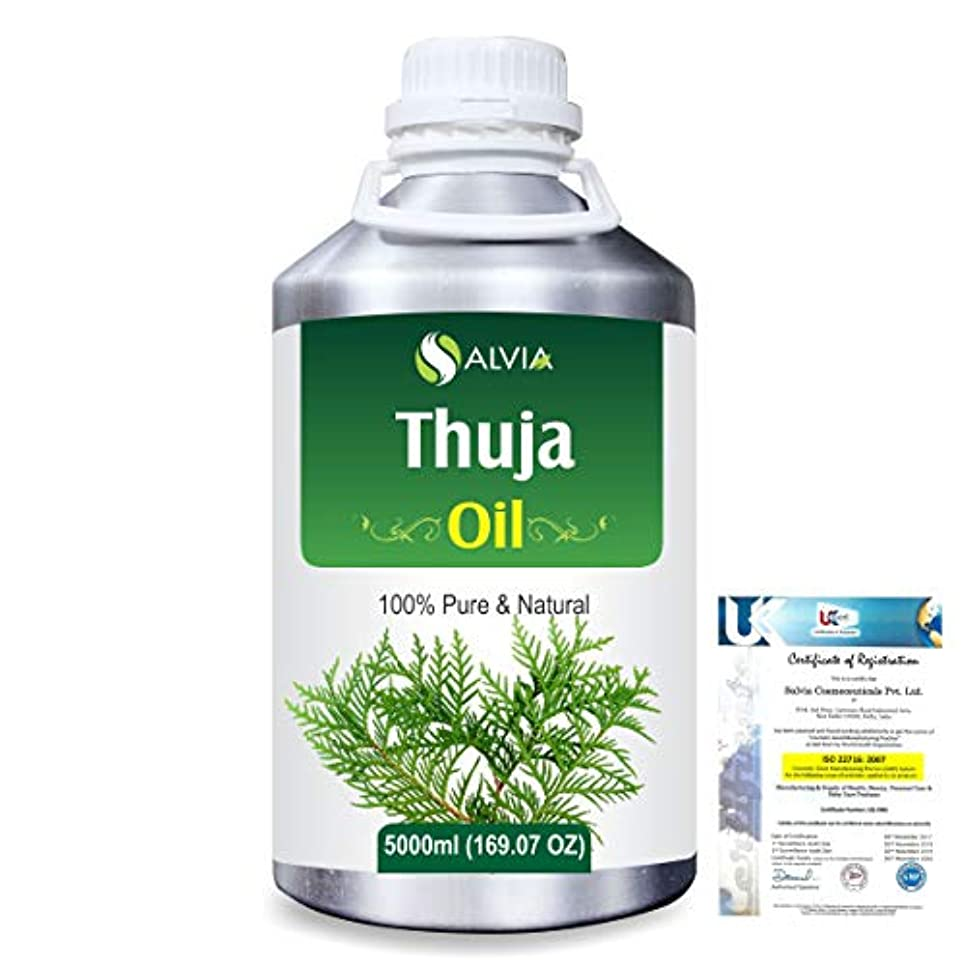 ストライプ知性炭水化物Thuja (Thuja Orientali) 100% Pure Natural Essential Oil 5000ml/169 fl.oz.