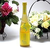 12本セット 篠崎 高知県の馬路村のゆず果汁を贅沢使用 ゆず梅酒はじめました。 500ml×12本