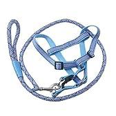 犬(M、チェスト:38-48センチメートル/ 15 19インチ、分類された色)に設定されたナイロンハーネス