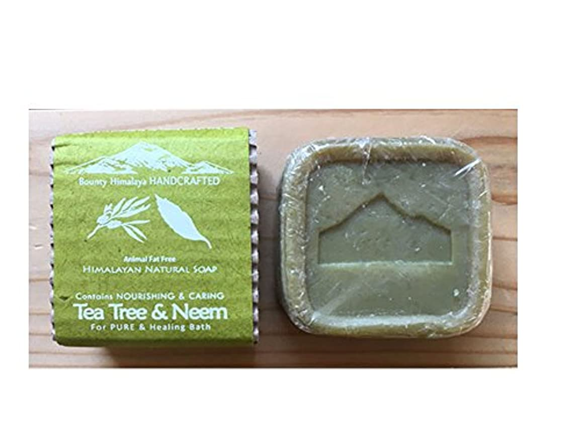 やけど変更可能原稿アーユルヴェーダ ヒマラヤ ティーツリー?ニーム ソープ Bounty Himalaya Tea Tree & Neem SOAP(NEPAL AYURVEDA) 100g