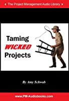 Taming Wicked Projects [並行輸入品]
