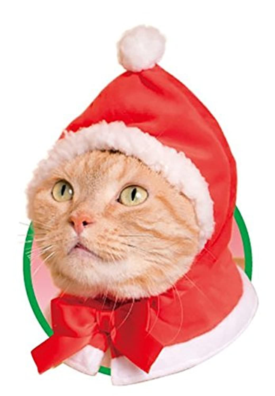 ねこのかぶりもの第13弾 かわいいかわいい ねこクリスマスちゃん 【 サンタ 】 単品 ガチャ