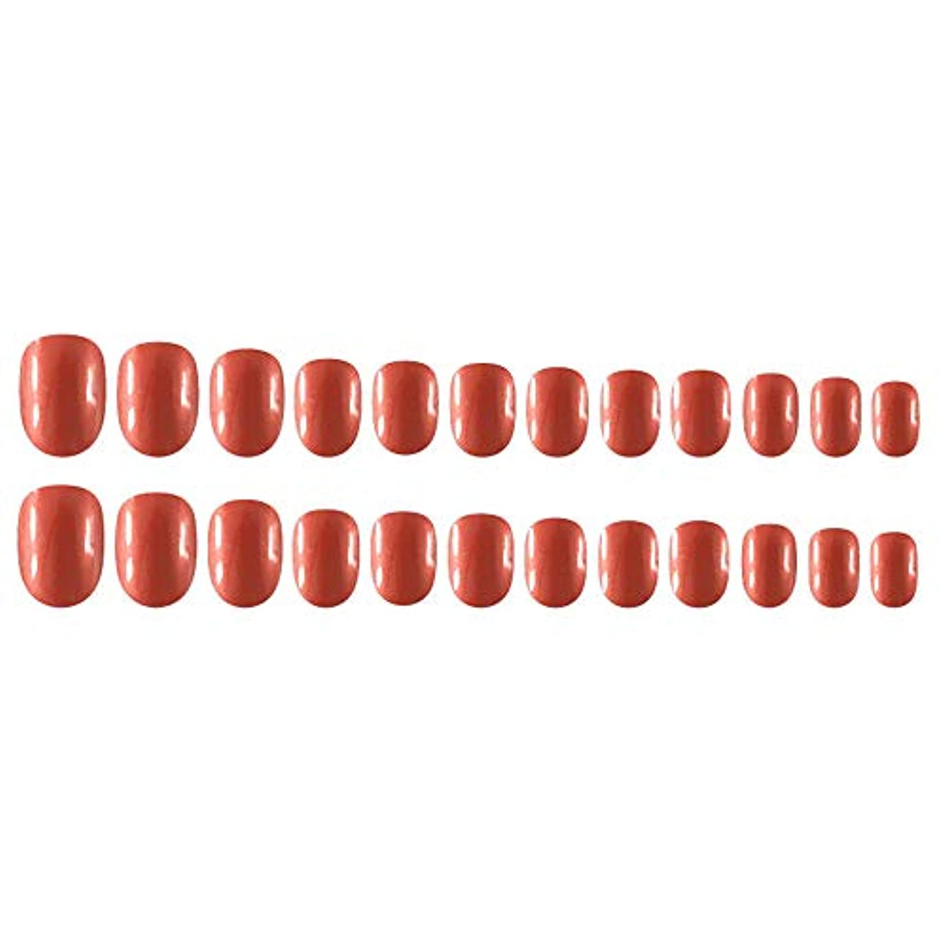 講義宿る舗装するDecdeal Decdeal ネイルチップ 24ピース 12異なるサイズ diy サロン ネイルアートツール 偽