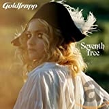 Seventh Tree (with DVD)