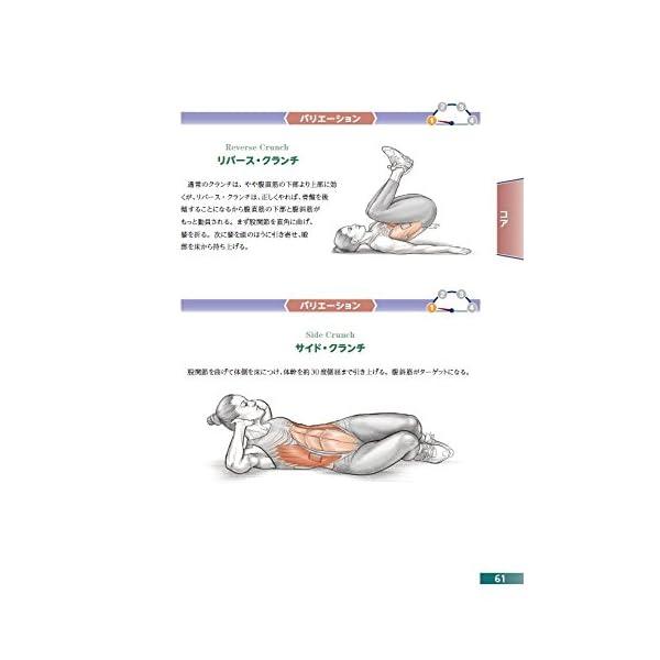 自重筋力トレーニングアナトミィの紹介画像4