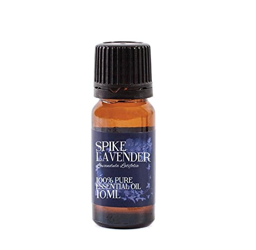 パニック火山破滅Mystic Moments | Spike Lavender Essential Oil - 10ml - 100% Pure