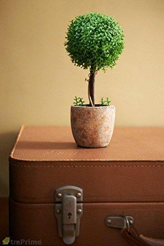 トピアリー フェイクグリーン 光触媒 光触媒植物 トピアリー ボール 高さ23cm