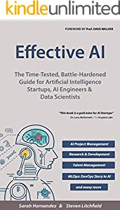 Effective AI: The Time-Tested, Battle-Hardened Guide for Artificial Intelligence Startups, AI Engineers & Data Scientists (English Edition)