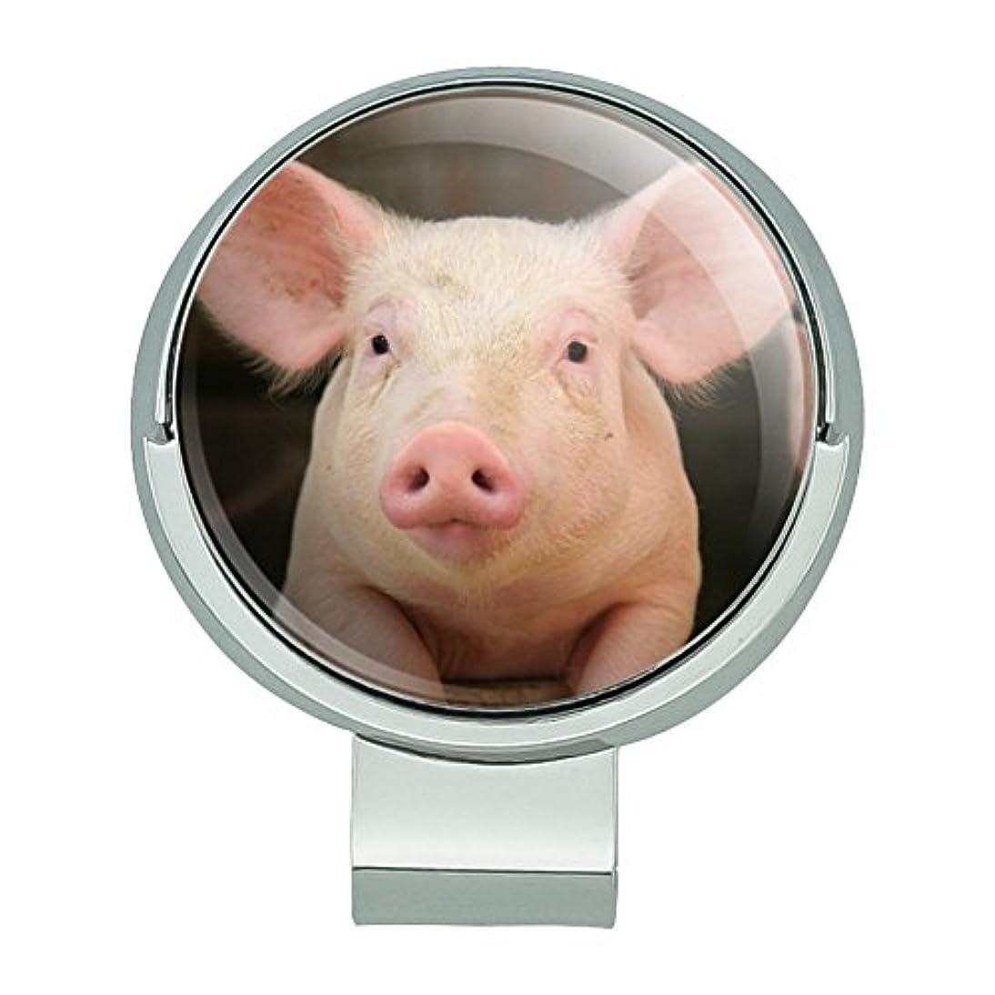 器具圧倒する神秘小さな豚のピギー磁気ボールマーカー付きゴルフハットクリップ