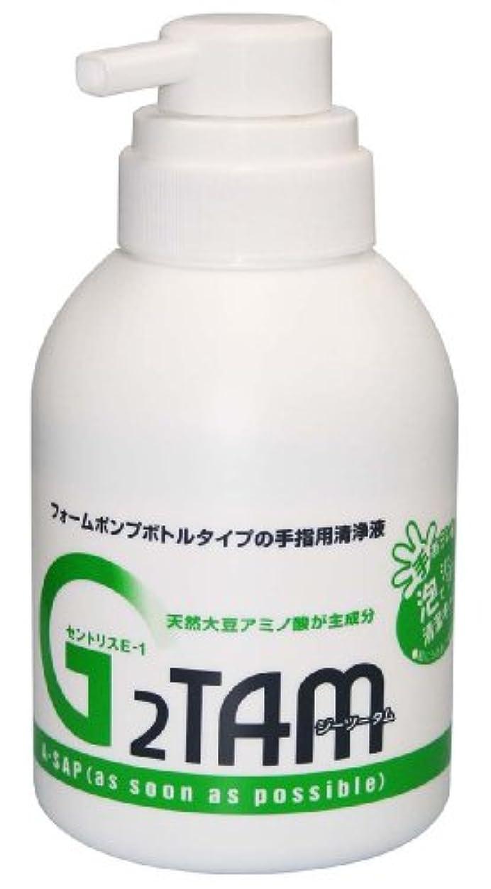 うっかり退屈認証G2TAM手指用清浄液ポンプ 500ml