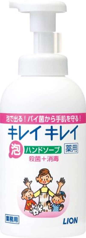 履歴書区別誠意キレイキレイ 薬用泡ハンドソープ 550ml