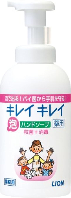 味かんがいポテトキレイキレイ 薬用泡ハンドソープ 550ml