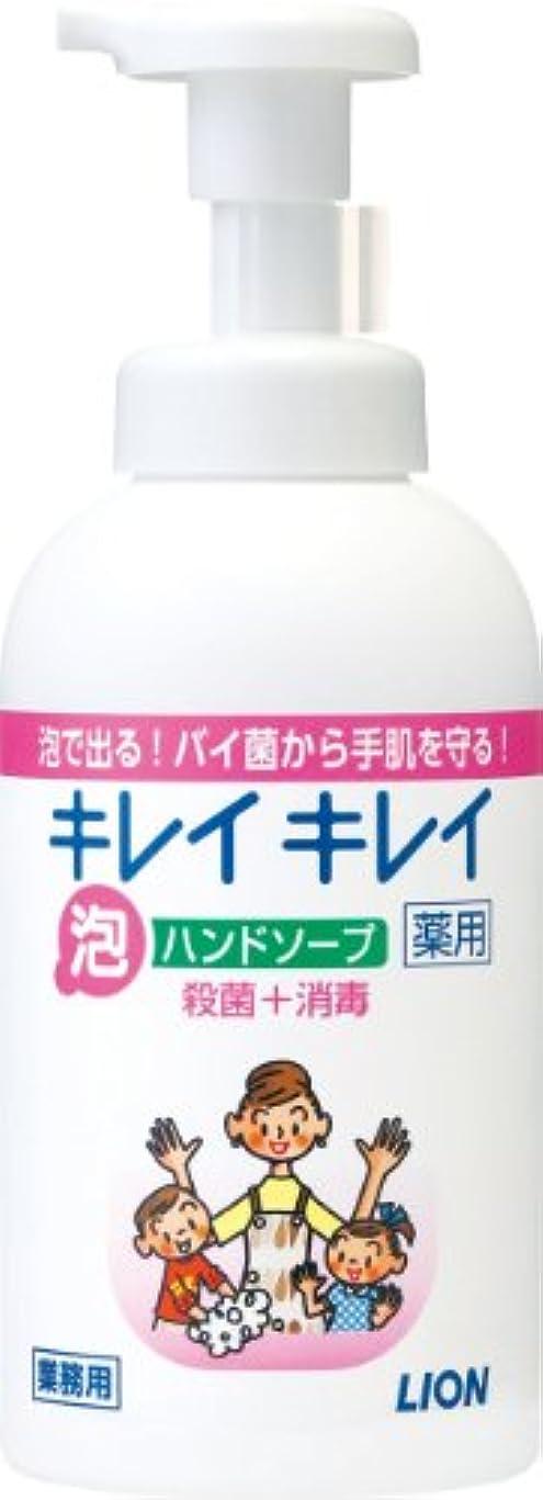 用心パイプ拷問キレイキレイ 薬用泡ハンドソープ 550ml