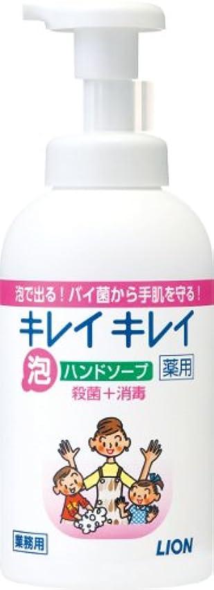 ユーザー小数祝うキレイキレイ 薬用泡ハンドソープ 550ml