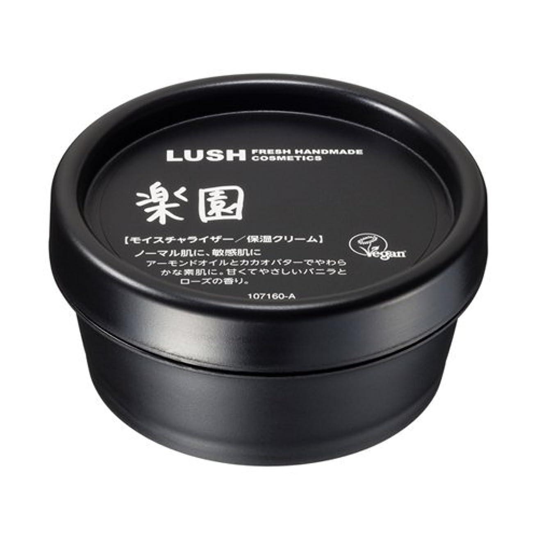 受信タイマー裂け目LUSH ラッシュ 楽園(45g)