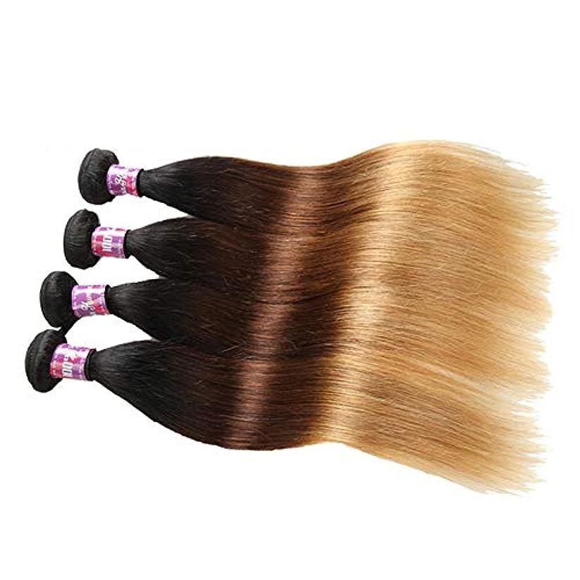 徐々に傀儡したがってSRY-Wigファッション ファッションオレンジグラデーションレースウィッグ混合色グルーレスロングナチュラルウェーブミドルパート合成レースフロントウィッグ女性用 (Color : Multi-colored, Size...