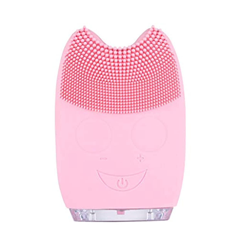 小競り合いキャンパス雇用Qi フェイシャルクレンザーブラシ、防水ミニ電動マッサージマシンシリコンフェイシャルクレンジングデバイスツール GQ (色 : Pink)
